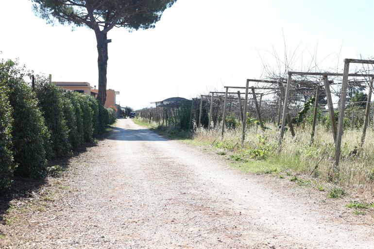 Le Castella CISTERNA DI LATINA (LT)